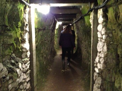 Dark and dank tunnel under Vimy Ridge.