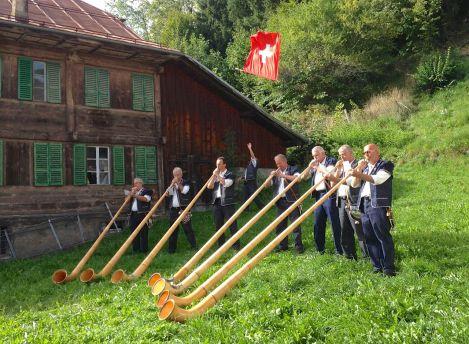 Alpenhorn concert