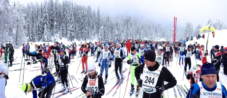 Awaiting the start of the Dolomitenlauf 42km Free technique race.