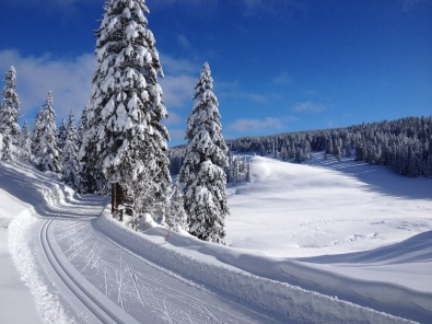 Typical scenery and snow conditions in the Jura mountains.