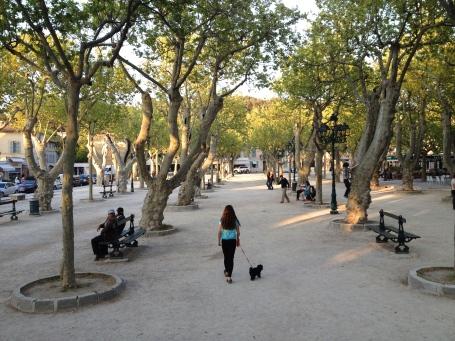Place des Lices, St Tropez