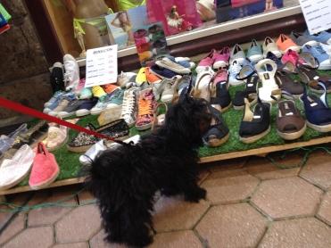 Shoe-shopping in Nice.